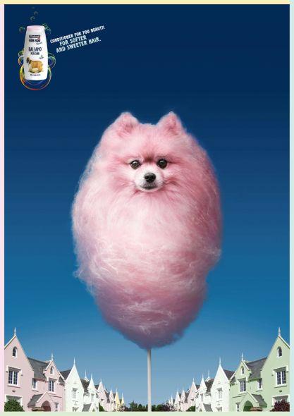 Print Ad ไอเดียให้กับแชมพูน้องหมา