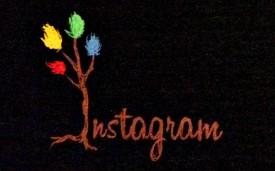 ผู้ใช้ Instagram ทะลุ 80 ล้านคน ไทยกว่า 3 แสน