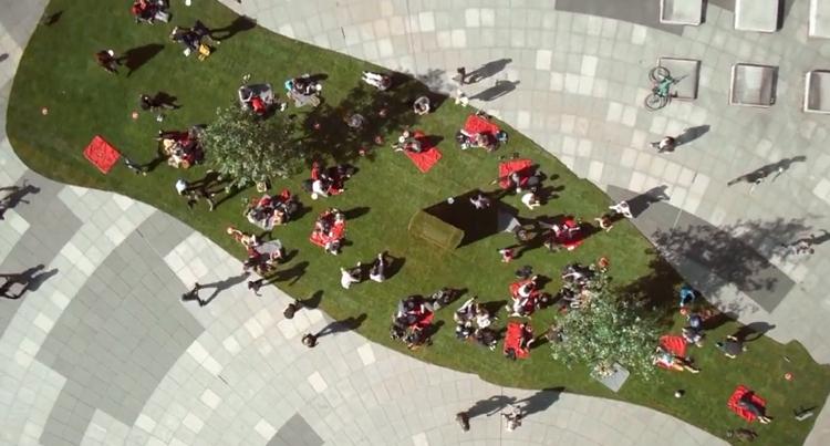 โค้กสร้างสนามหญ้าเคลื่อนที่ สร้างความสุขเล็กๆ และแจกดื่มโค้กฟรี