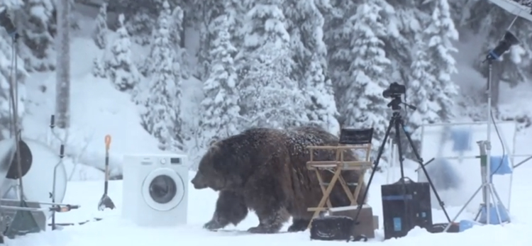 เครื่องซักผ้าซัมซุงกับโฆษณาชวนขำ เมื่อขนหมีเปลี่ยนสีได้ด้วย…