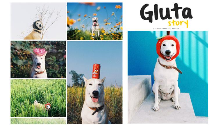 """สัมภาษณ์ : เจ้าของ """"กลูต้า"""" จากหมาข้างถนนสู่สุนัขเซเล็บในโลกออนไลน์"""