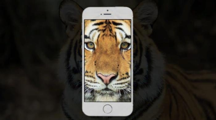 WWF ใช้ SnapChat รณรงค์ช่วยสัตว์ก่อนสูญพันธุ์ด้วยภาพ Selfie ภาพสุดท้าย!