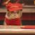 Pizza Hut เอาใจคนรักแมว-เปลี่ยนเจ้าเหมียวเป็นพนักงานทั้งร้านซะเลย