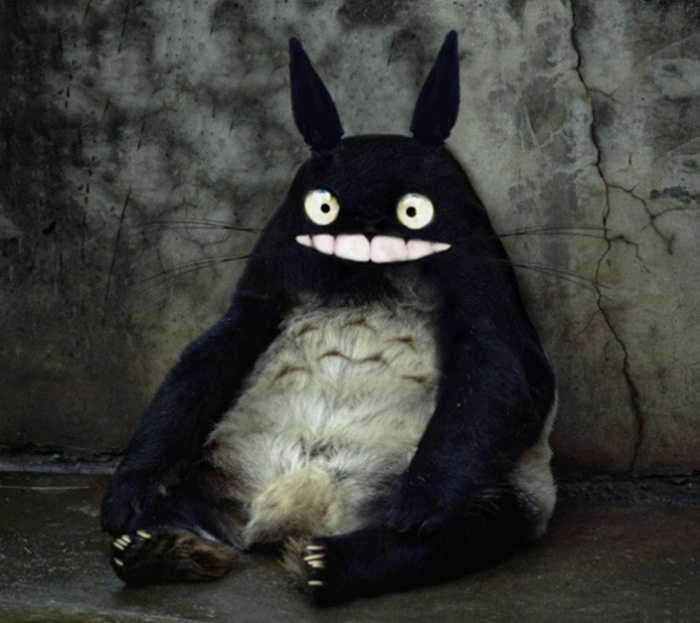 real-totoro