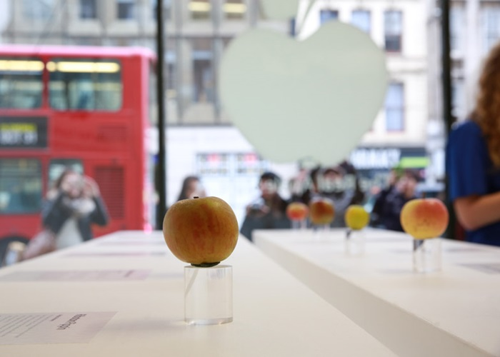 Real-Apple-Store_dezeen_784_9