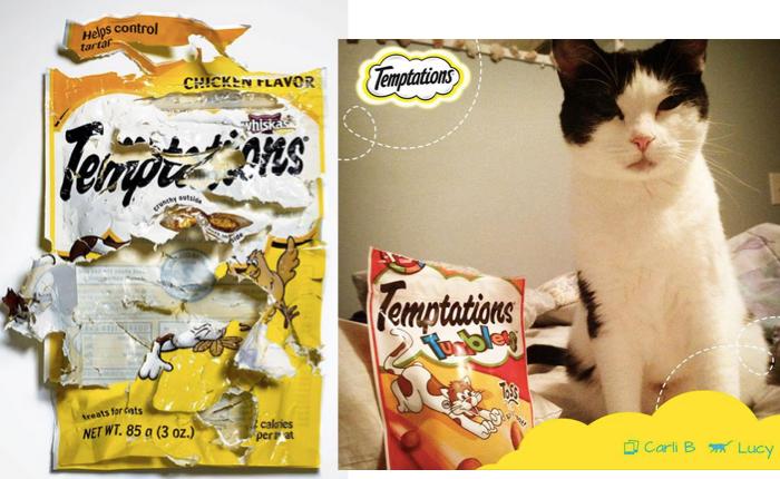 แบรนด์ขนมแมวน้อยการันตีความอร่อยของสินค้าด้วย Print Ad รูปซองสุดยับเยิน! (ด้วยฝีมือน้องเหมียวเอง)