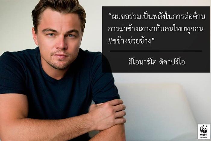 Leonardo's Twitter Quote-700