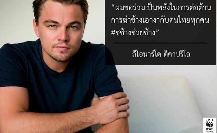 """ลีโอนาร์โด ทวีตสนับสนุนคนไทยช่วยช้าง ต้านการฆ่าช้างเอางา ผ่านแคมเปญ """"ช.ช้าง ช่วยช้าง"""""""