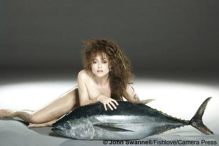 Fish Love2
