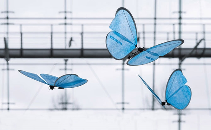 """Drones รูปแบบใหม่ สวยงามที่สุด ด้วยการเลียนแบบการบินของ """"ผีเสื้อ"""""""