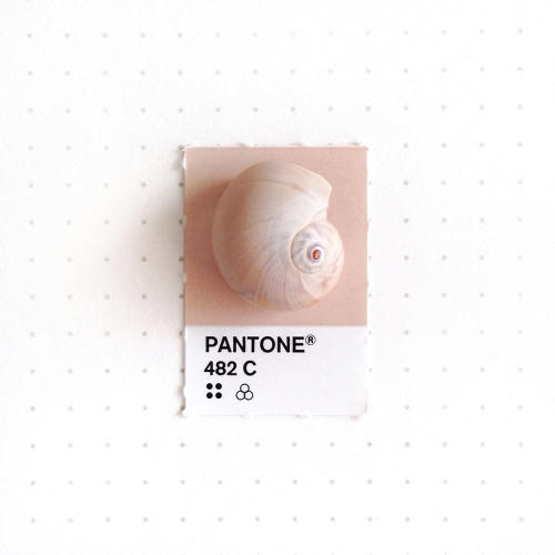 3048367-slide-s-3-20-tiny-objects-color-matched-with-pantone-chips