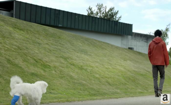 Amazon เคลมส่งสินค้าไวภายใน 1 วัน ด้วยการเล่าเรื่องเจ้าของน้องหมาขาเป๋ผู้ใจดี
