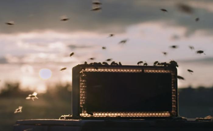 ลำโพงหรูโชว์พลังเสียงเหมือนจริงผ่านลำโพงแค่ปล่อยเสียงรังผึ้งก็หลอกผึ้งได้จริงๆ
