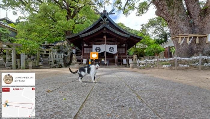 ทาสแมวจงมา! ญี่ปุ่นโปรโมทการท่องเที่ยวด้วยแผนที่สไตล์เหมียวๆ