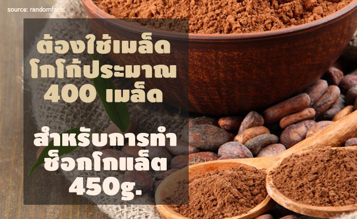 400 cocoa seed