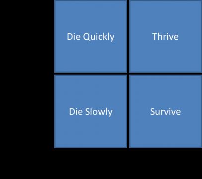 efficient-vs-effective-matrix-2-jpg