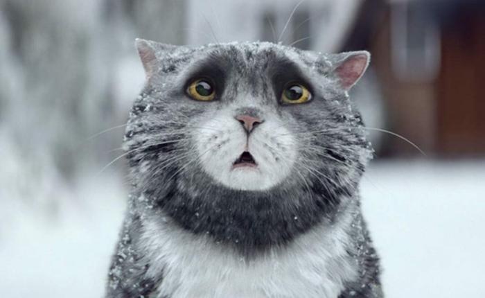 """Christmas ad จาก Sainsbury ปลุกชีพเจ้าเหมียว """"Mog"""" ทำยอดขายนิทานขึ้น Bestseller คู่แข่งสำคัญ John Lewis"""