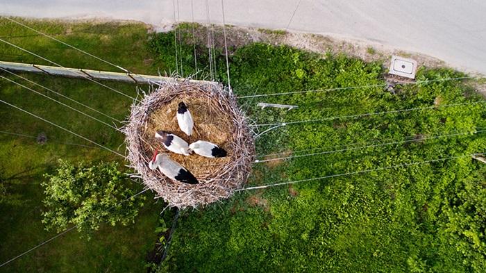 best-drone-photos-2015-dronestagram-eric-dupin-32__880