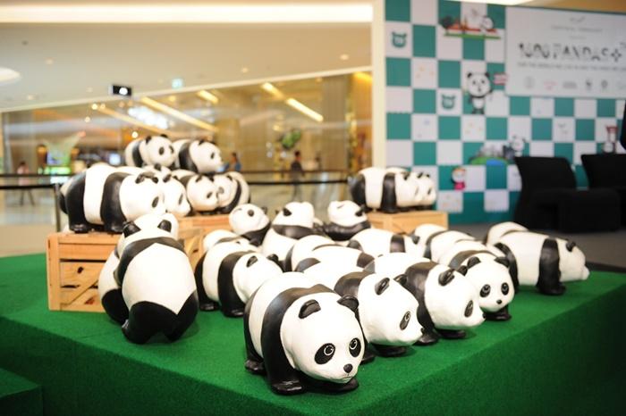 Pandas-World-Tour-in-Thailand-7