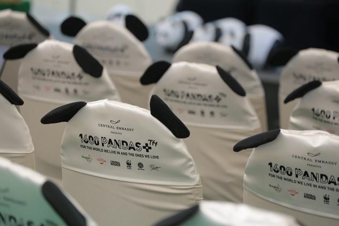 Pandas-World-Tour-in-Thailand-8