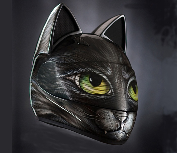 cat helmet