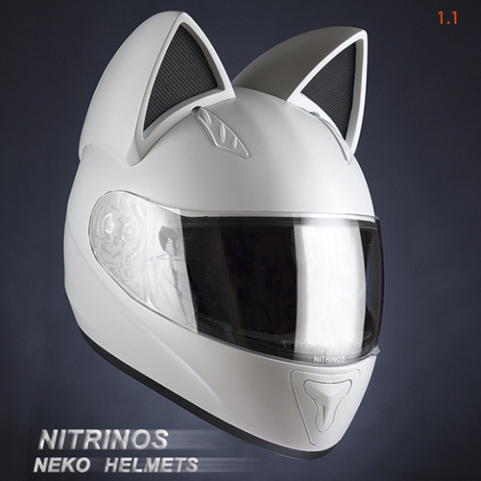 cat helmet2