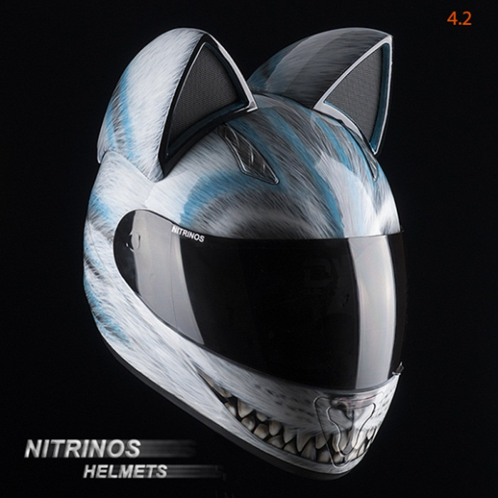 cat helmet6
