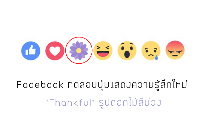 Facebook ทดสอบปุ่มแสดงความรู้สึกใหม่ Thankful รูปดอกไม้สีม่วง