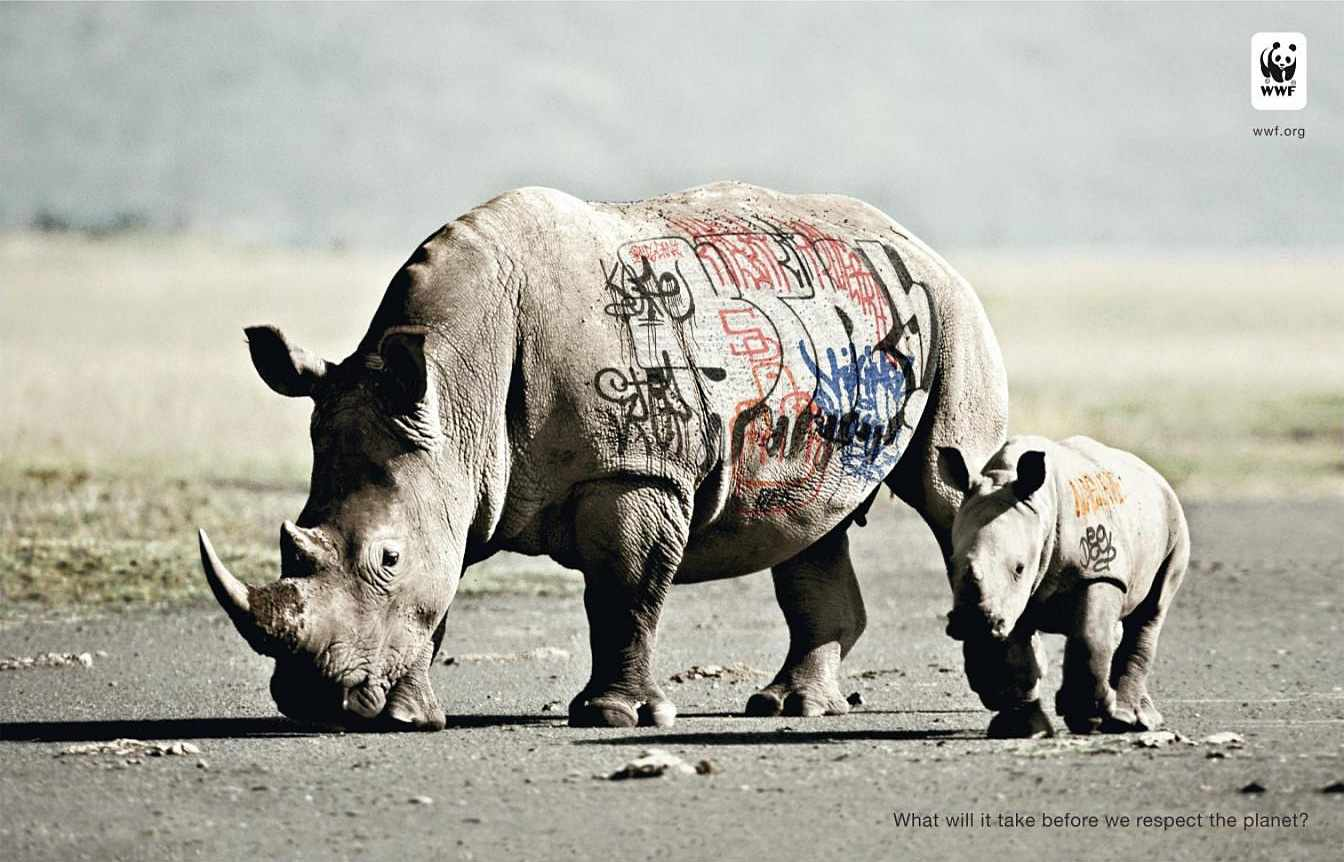 biodiversity-and-biosafety-awareness-rhinoceros