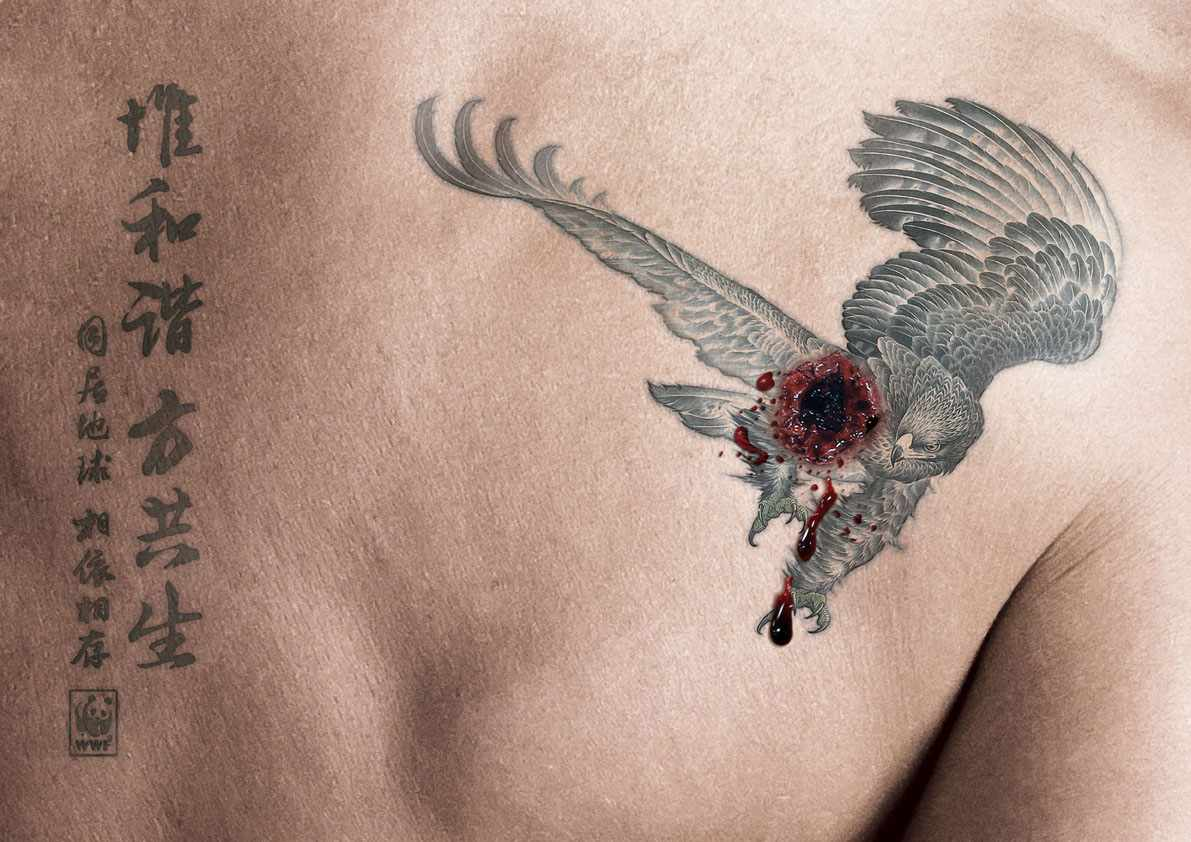 eagle_animal-protection-rgb