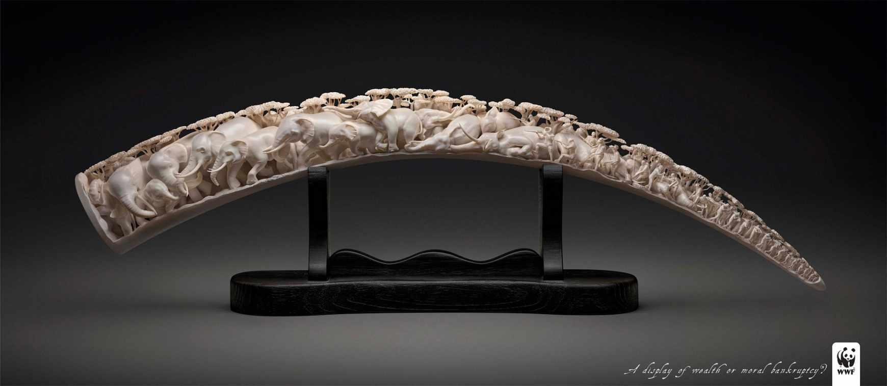 wwf-ivory