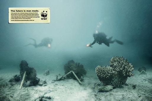 wwf-reef