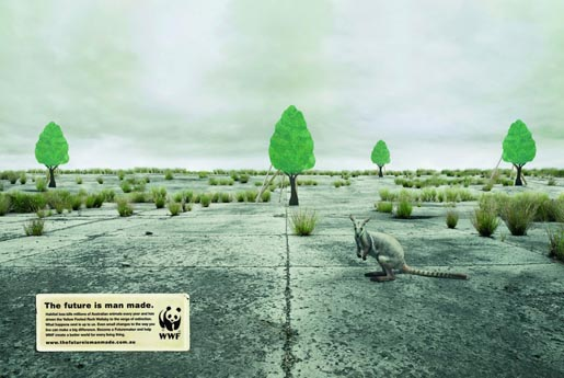 wwf-rock-wallaby