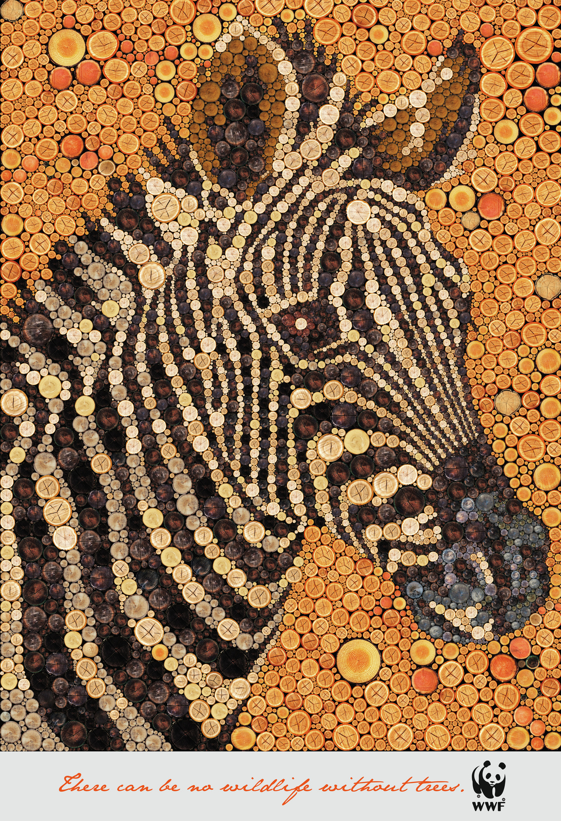 wwf-wwf-zebra-giraffe-bird-tiger-print-384957-adeevee