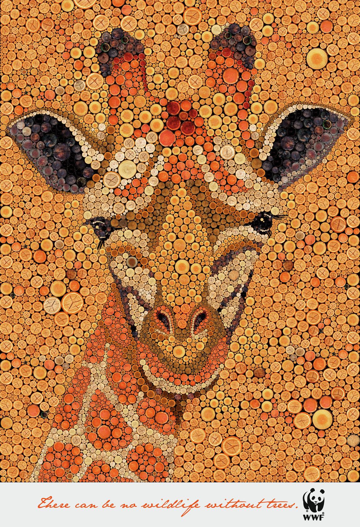 wwf-wwf-zebra-giraffe-bird-tiger-print-384958-adeevee