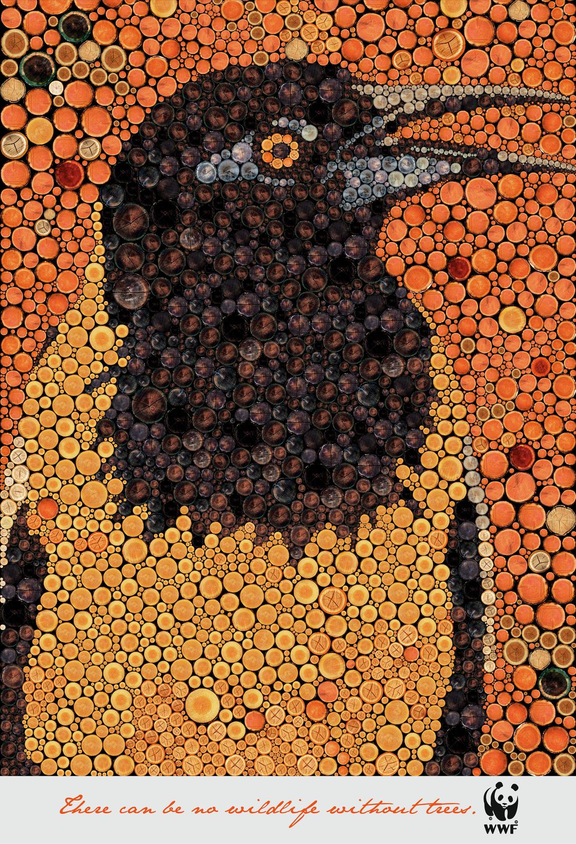 wwf-wwf-zebra-giraffe-bird-tiger-print-384959-adeevee