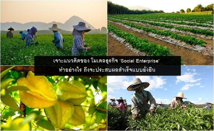เจาะแนวคิดของ โมเดลธุรกิจ 'Social Enterprise' ทำอย่างไร ถึงจะประสบผลสำเร็จแบบยั่งยืน