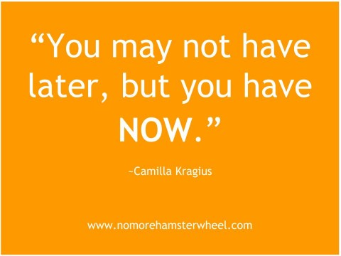 You-may-not-have-later-but-you-have-now.-