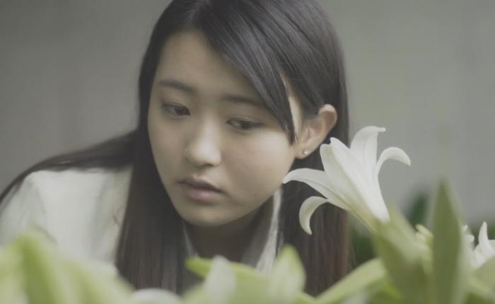 JWT ญี่ปุ่นร่วมกับนักร้องดังโปรโมทเพลงใหม่ ทำต้นไม้ให้กลายเป็นลำโพงส่งเสียงจากธรรมชาติให้คนฟังได้จริงๆ