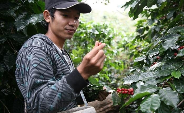 ดีแทค สนับสนุนการทำเกษตรครบวงจร สร้างความยั่งยืนให้เกษตรกรไทย ตามรอยพระราชดำริของพ่อหลวง ร.๙