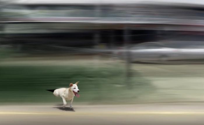 รู้จัก 'วิสัยทัศน์อุโมงค์' หรือยัง? คลิปเตือนภัยขาซิ่ง ขับรถเร็วส่งผลต่อการมองเห็นอย่างไร