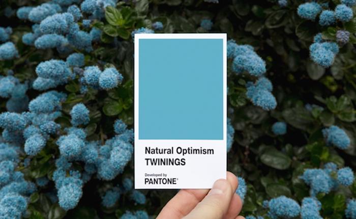 """PANTONE เปิดตัวสีใหม่ """"Natural Optimism"""" ที่ให้ความรู้สึกถึงการมองโลกในแง่ดี"""