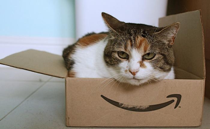 เหตุผลที่ทำให้ Amazon คงไม่มีวันเข้ามาทำธุรกิจในเอเชียตะวันออกเฉียงใต้