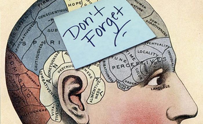 Innovative Idea: เรียนรู้ความลับของสมองสู่การฝังแคมเปญเข้าในหัวผู้บริโภค