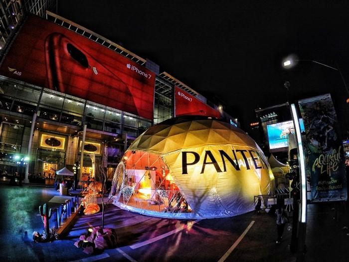 Pantene_6