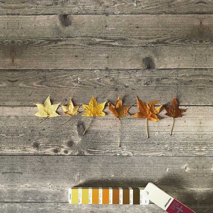 pantonepantone-colors-landscape-photography-andrea-antoni-54-59196ddf3b4ae__700