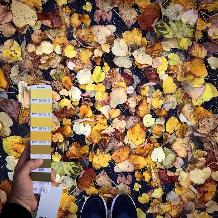 pantonepantone-colors-landscape-photography-andrea-antoni-57-59196de693b1d__700