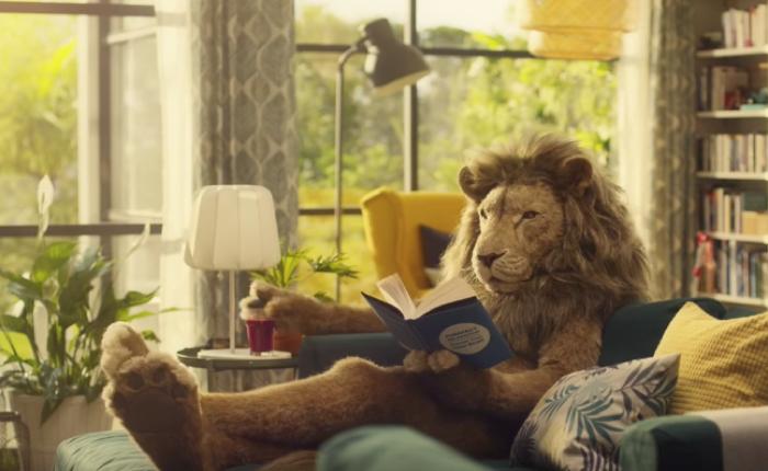 IKEA ส่งโฆษณาน่ารักพาสิงโตจอมขี้เกียจมาไว้ในห้องรับแขก เพื่อรอเม้นต์สำคัญของชีวิต