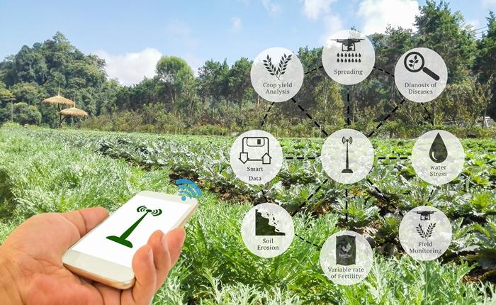 หัวเว่ยชูนวัตกรรมในภาคการเกษตร พลิกวิถีเกษตรยุค 4.0