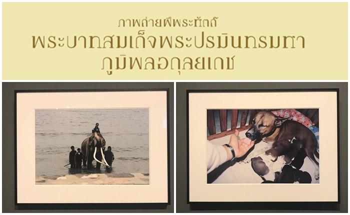 ชวนมาร่วมชมนิทรรศการ 'ภาพถ่ายฝีพระหัตถ์ในหลวงรัชกาลที่ 9′ ณ หอศิลป์ฯกรุงเทพ